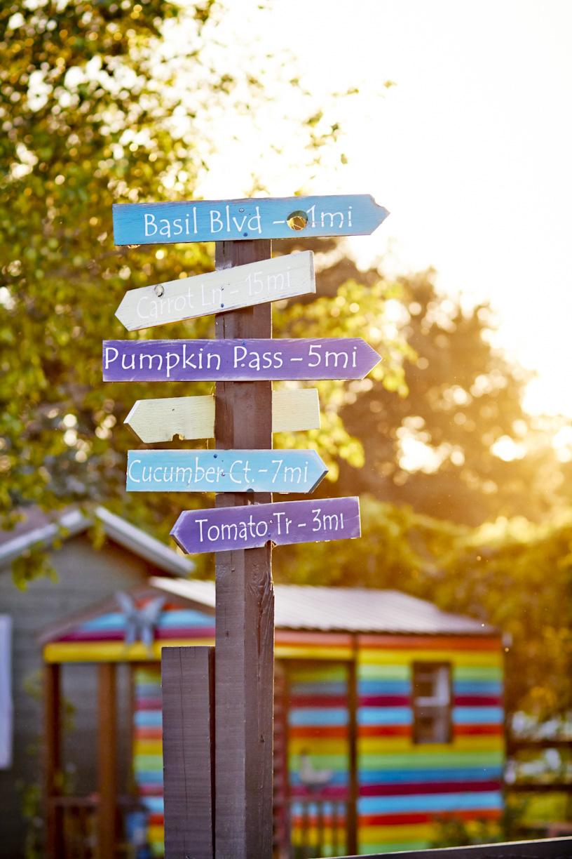 colorful-bohemian-farm-signs-lifestyle-photography.jpg