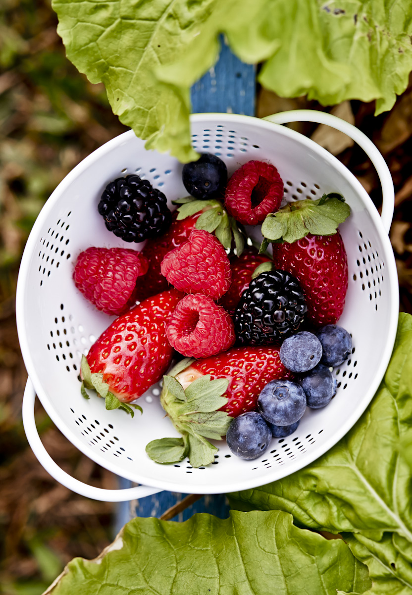 fresh-picked-garden-berries-lifestyle-food-photography.jpg