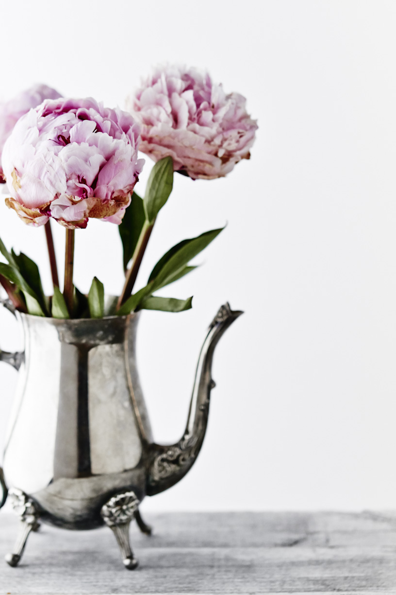 peonies-cilver-teapot-lifestyle-flower-photography.jpg