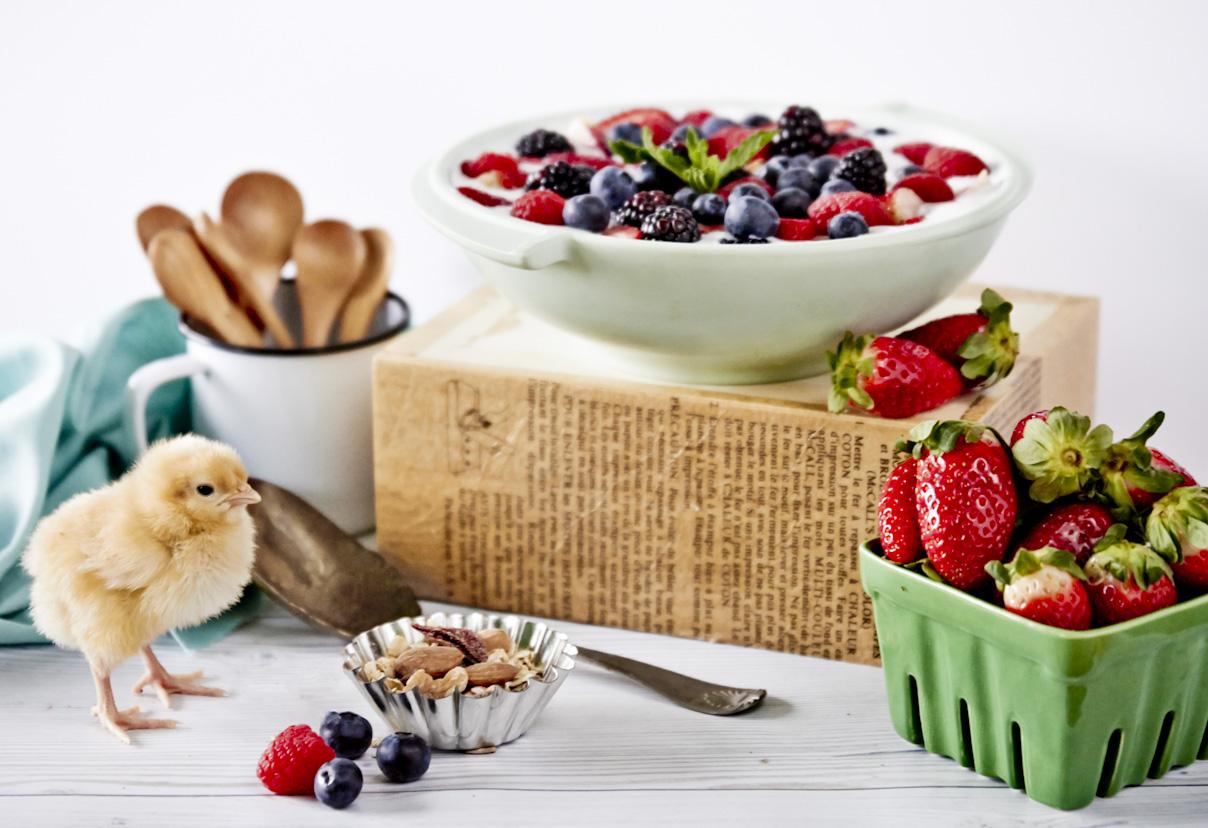 yogurt-fresh-berries-baby-chick-lifestyle-food-photography.jpg