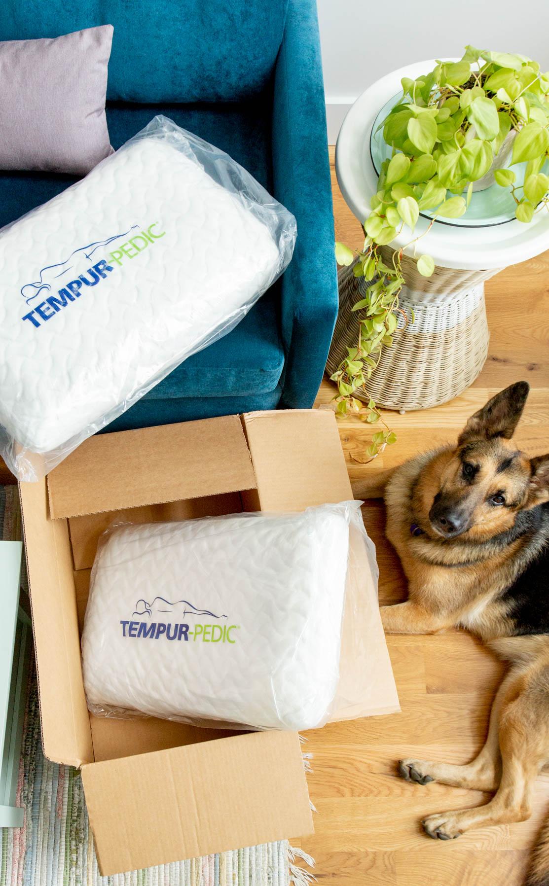 tempur-pedic-pillow-campaign-1.jpg