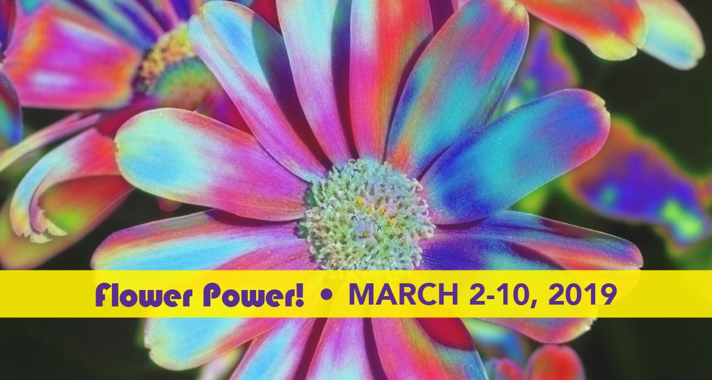 Philadelphia Flower show 2019.jpg