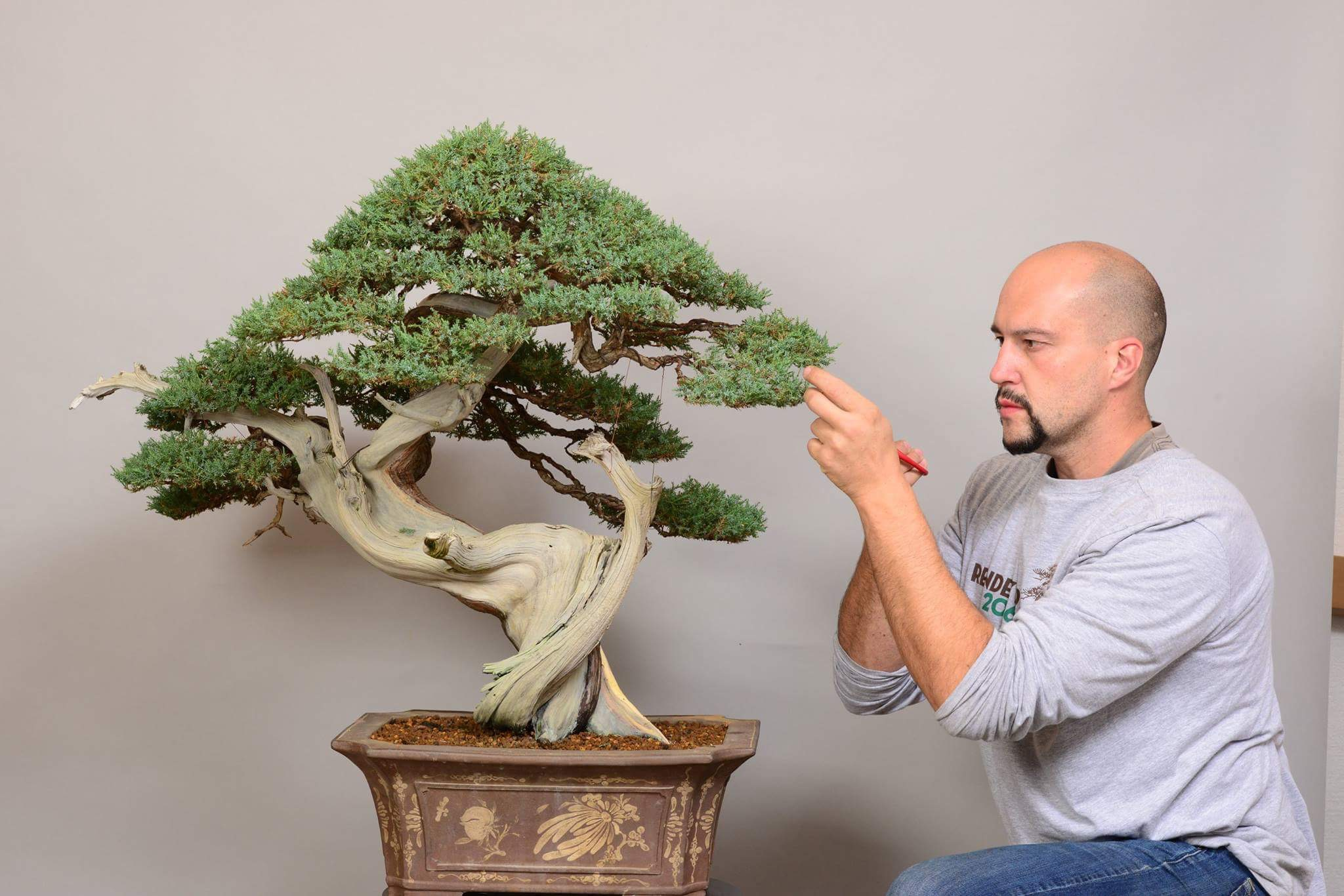 Italian Bonsai Artist Mauro Stemberger.JPG