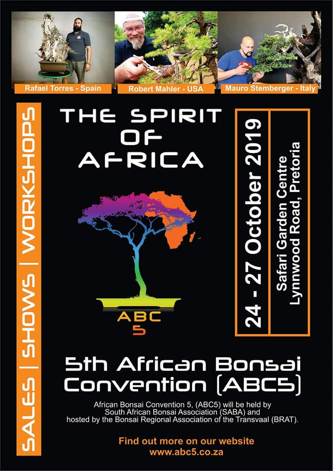 The Spirit of Africa.jpg