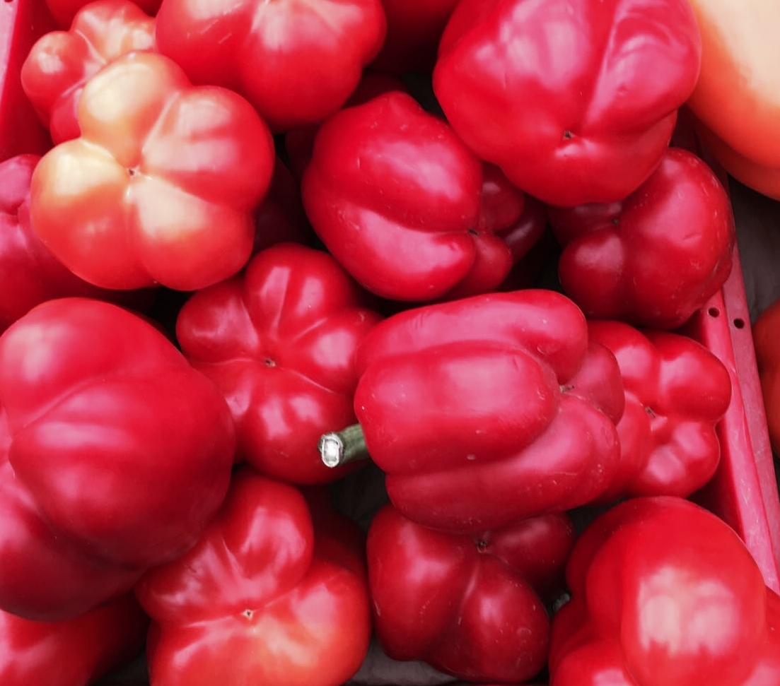 Bell Peppers: Anti-Aging to keep your skin beautiful.