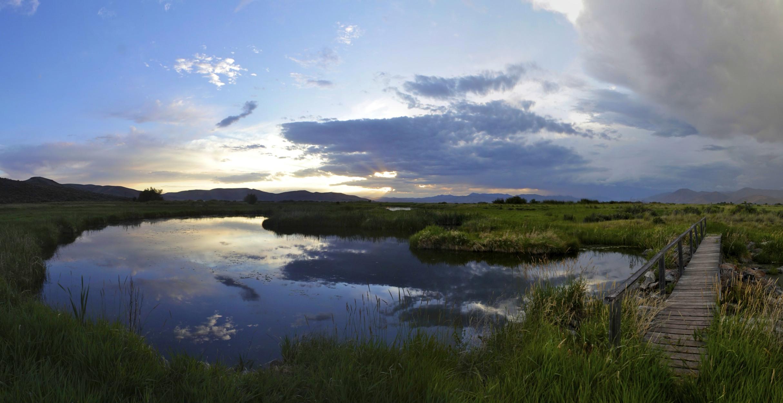 silver-creek-preserve-stalker-.jpg