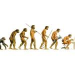 6.evolution-devolution-150x150.jpg