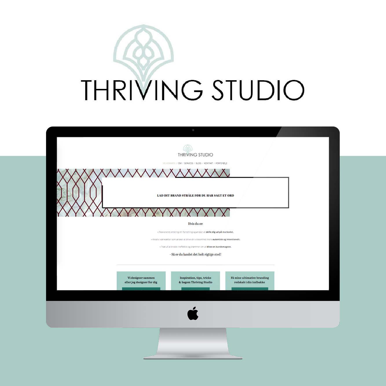showcase1-thrivingstudio.jpg
