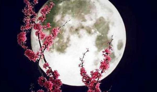full-moon-virgo-2017.jpg