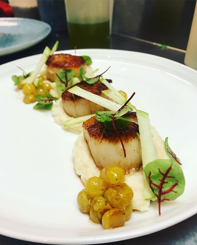 Look out for these sexy scallops on the way to the @chase_center this week! They're seared perfectly and served with Bronx grapes and celery root/apple purée!  #eeeeeats #dogpatcheats #scallops #dankness