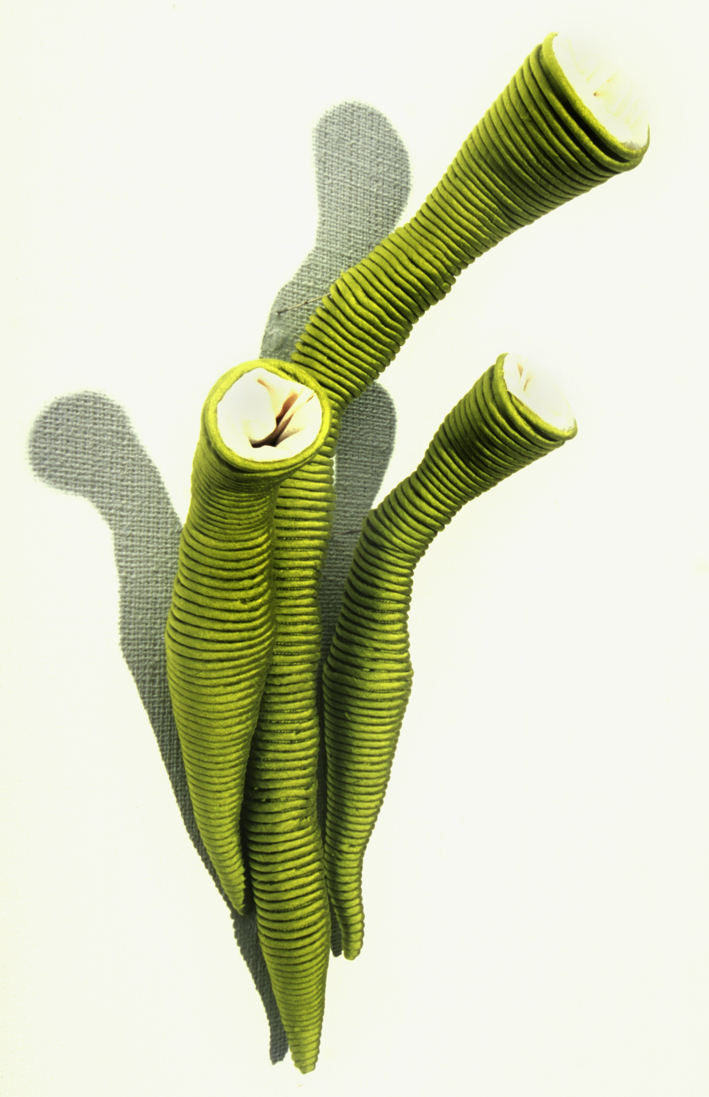 Sarah Rayner.  Evolucrum viridi . Involvo Evolvo. Craft Queensland (Artisan Gallery). 2001. Silk.Photograph by Don Hildred.