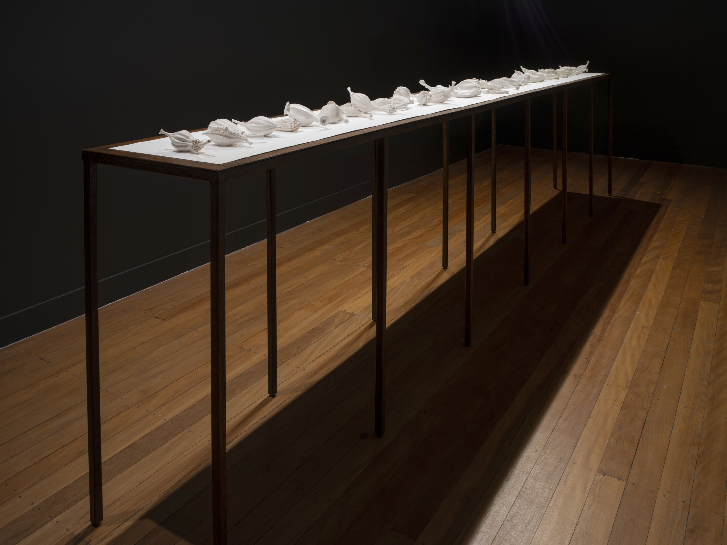 Sarah Rayner,  Flowerbones  installation at Onespace Gallery, 2018, 50 individual componenets (37 works), rusted steel tables, 4350mm x 470mm x 950mm with cotton rag paper base. Photo: Carl Warner.