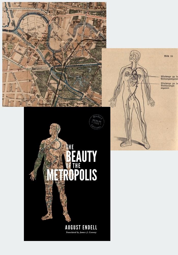 Metropolis evolution.jpg