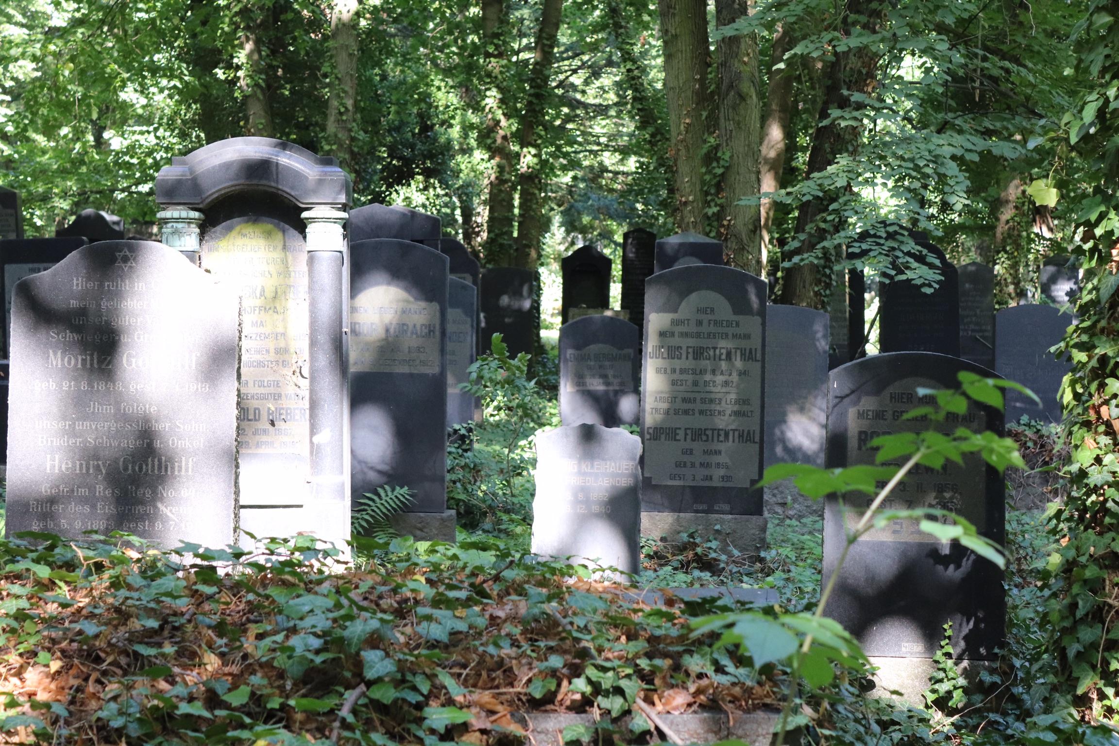 Friedhof 3.jpeg