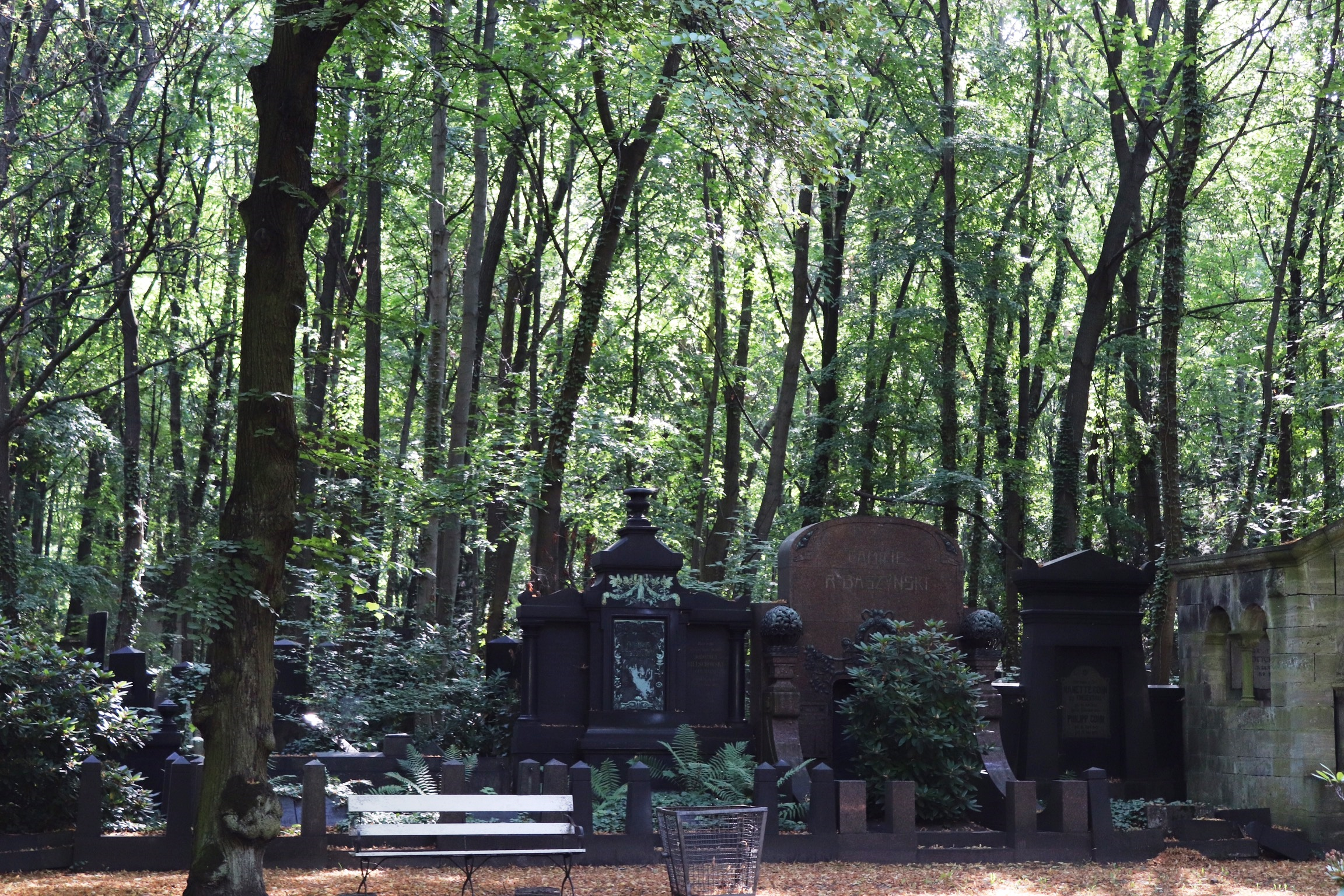 Friedhof 4.jpeg