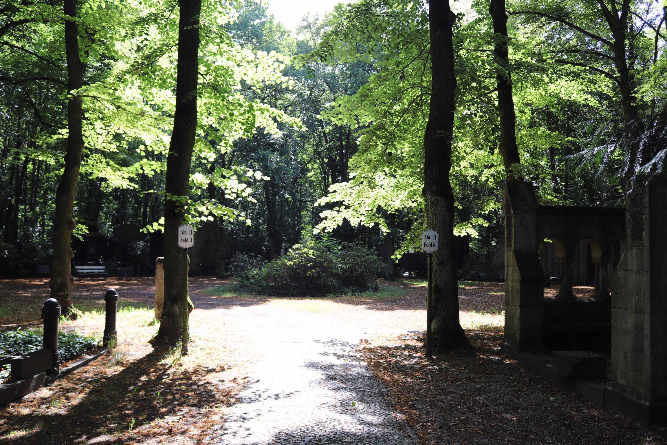 Friedhof 1.jpeg