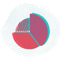 Bias assessment (on-line tool) -