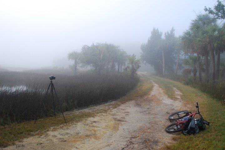 foggy_path.jpg