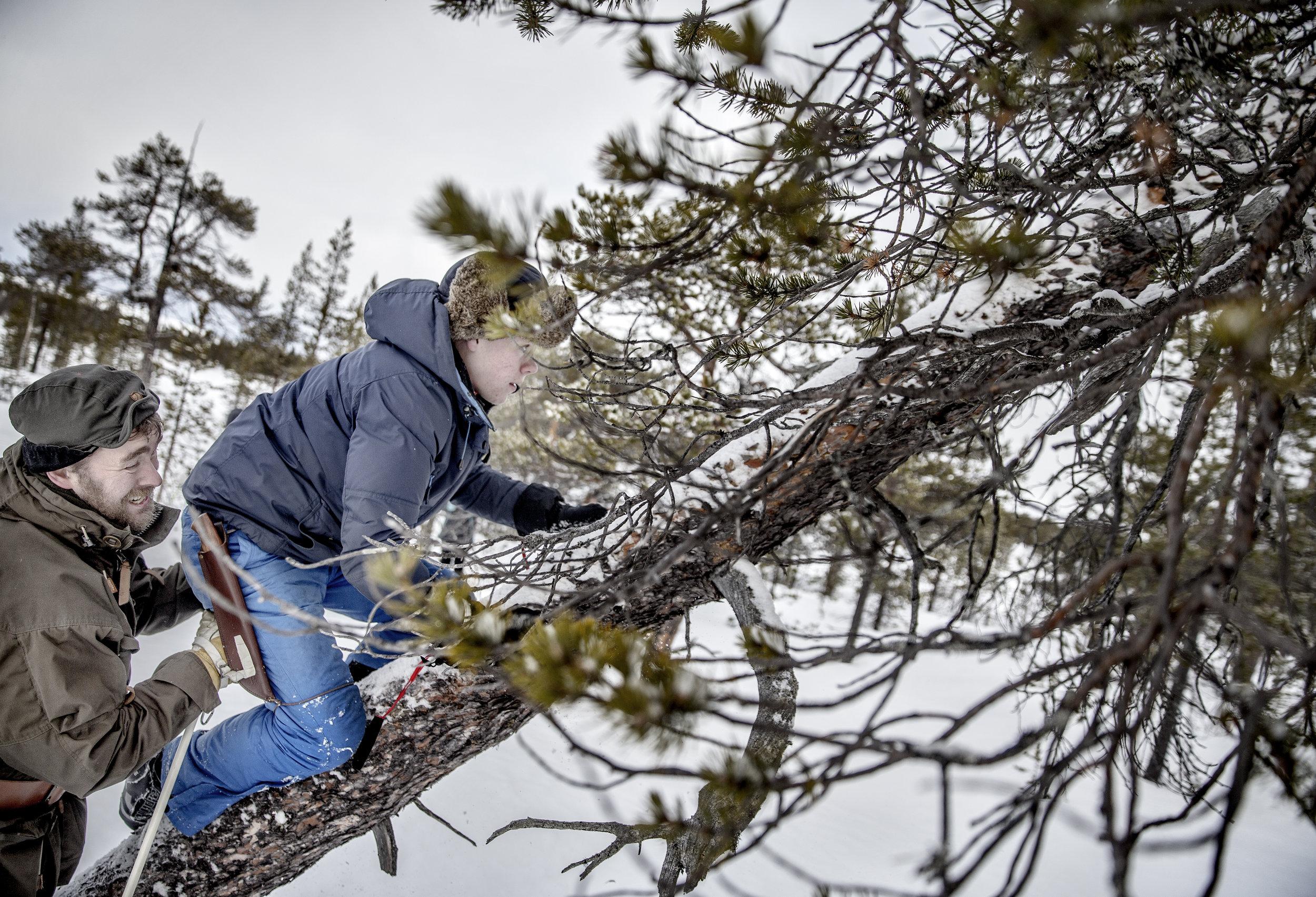 Hvordan bygge indre styrke hos ungdom - Norsk Mestring
