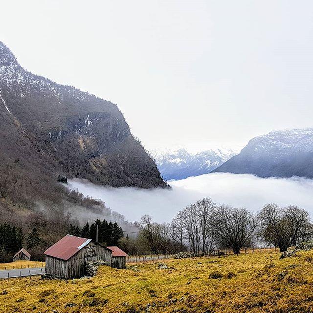 Her kommer siste bildeserie fra RoadTrip'en.Siste del over Norges høyeste fjellovergang, Sognefjellet,på vinterføre. Har kjørt 9262 km og sett store deler av landet. Møtt mange både fagfolk og lekfolk som alle har tro på at ungdommer som strever kan ha nytte av å snakkes om følelsene sine rundt et bål. Takk til alle som har gitt strøm, mat, gode råd og samtaler.Det er et flott land vi bor i. Det meste er natur og det meste er nord. Nå går turen til Finnmark igjen og oppdrag for kommuneNorge#norsketurbilder #foto #mittfriluftsliv #ut #liveterbestute #friluftsliv #fysiskaktivitet #villmarksterapi #psykologi #jfof #ute #uteliv #adventure #explore #bonfire #norskfriluftsliv #norgefoto #welcometonature #thegreatoutdoors #adventure #komdegut #psychology #følelser #emotionalhealth #personligutvikling #folkehelse #troubledteens