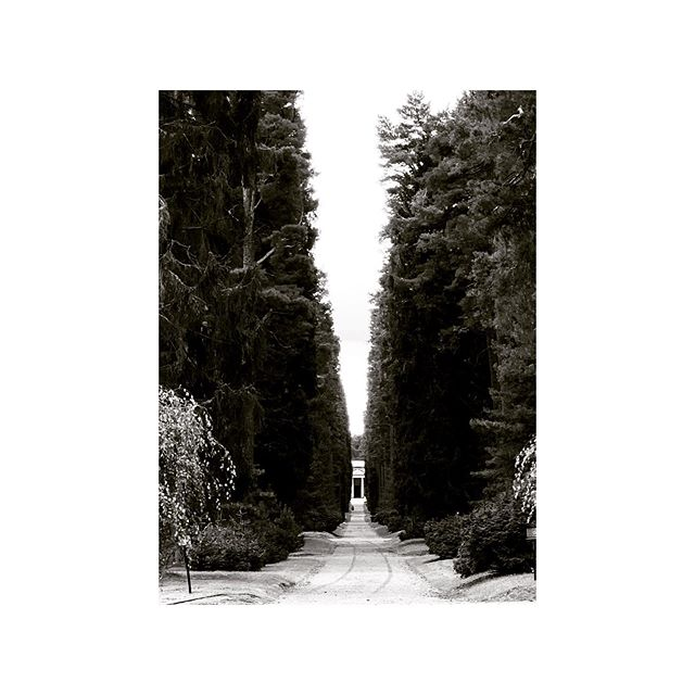 OKK+Karin Söderling, världsarvssamordnare på Kyrkogårdsförvaltningen, efterlängtat återbesök 1 av 2, på Skogskyrkogården.  Vårt närmsta världsarv kom till som ett resultat av Stockholms ambition att inrätta kyrkogård med utgångspunkt i landskapet, något som låg i tiden efter sekelskiftets intellektuella paradigmskifte med nya begrepp som empati och inkännande arkitektur. Referens var Waldfriedhof den första skogskyrkogården i München tillsammans med influenser från Jung, Freud och Tessenow.  1914 genomfördes Sveriges första arkitekttävling med Östberg och Wahlman i juryn. 50 förslag lämnades in bara ett uppfyllde alla kriterier., Tallum. Vinnarna var som bekant de unga herrarna Asplund och Lewerentz.  Allt återberättat av vår outsinliga kunskapskälla, Karin. Visste inte att Lewerentz i gräskullen lätt insjunkna trappa  upp mot almhöjden har lägre och lägre steg ju längre upp man går. Allt för tröst och lättnad. Medkänsla, inlevelse och intimitet präglar arkitekternas närvaro i arkitekturen. I sanning aktivitetsdriven arkitektur. #okkarchives  @okk.nu #skogskyrkogården
