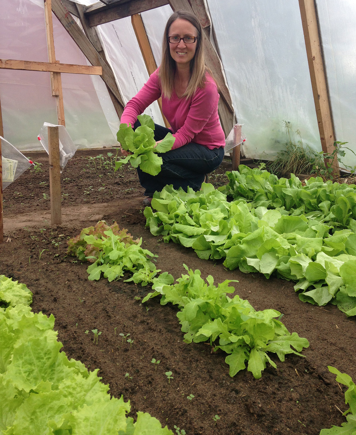 organic-lettuce.jpg
