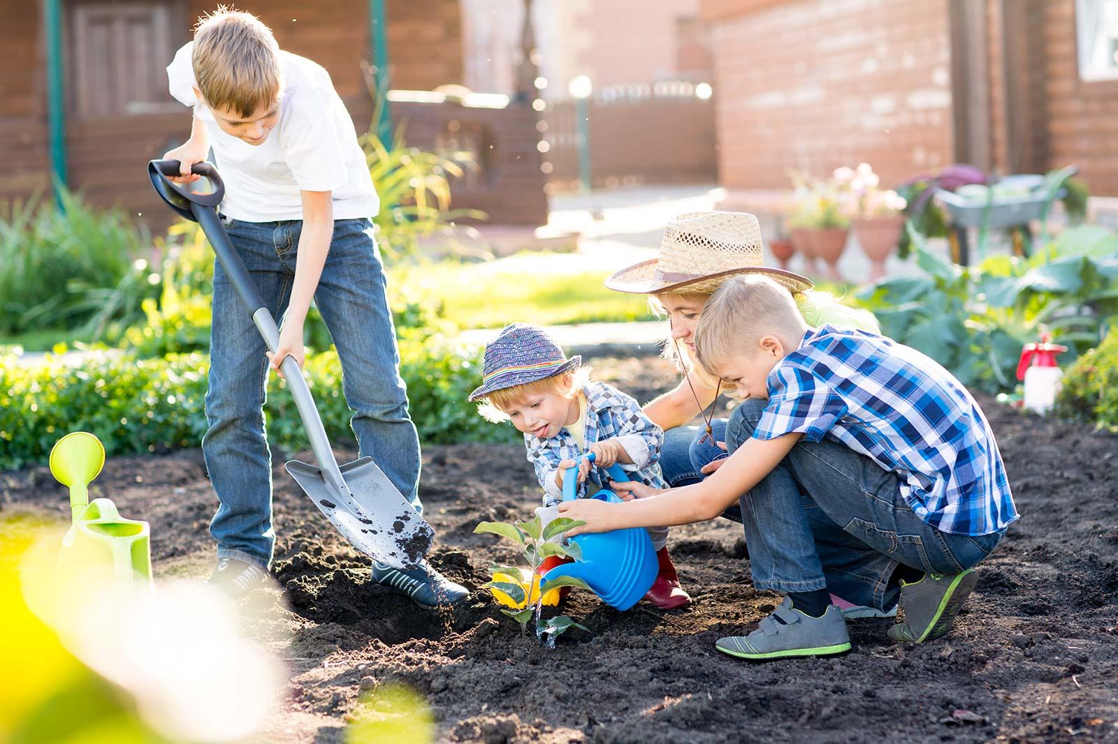 indiana-kids-garden.jpg