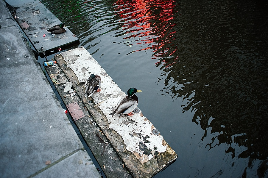 Darren Bester - Photographer - Travel - Europe - Amsterdam_0042.jpg