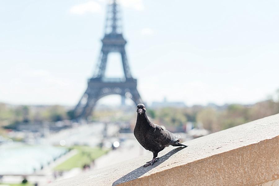 Darren Bester - Photographer - Travel - Europe - Paris_0024.jpg