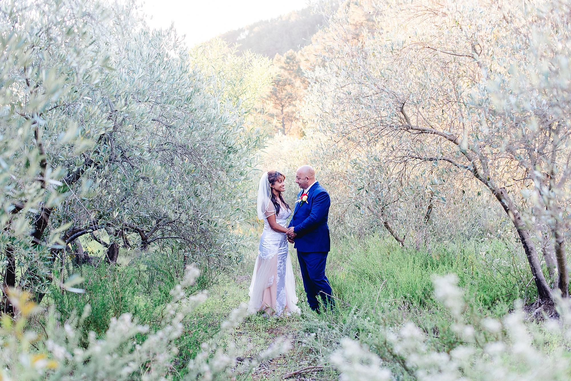 www.darrenbester.co_.za-Cape-Town-Wedding-Photographer-Cascade-Manor-Neave-and-Michelle_0080.jpg