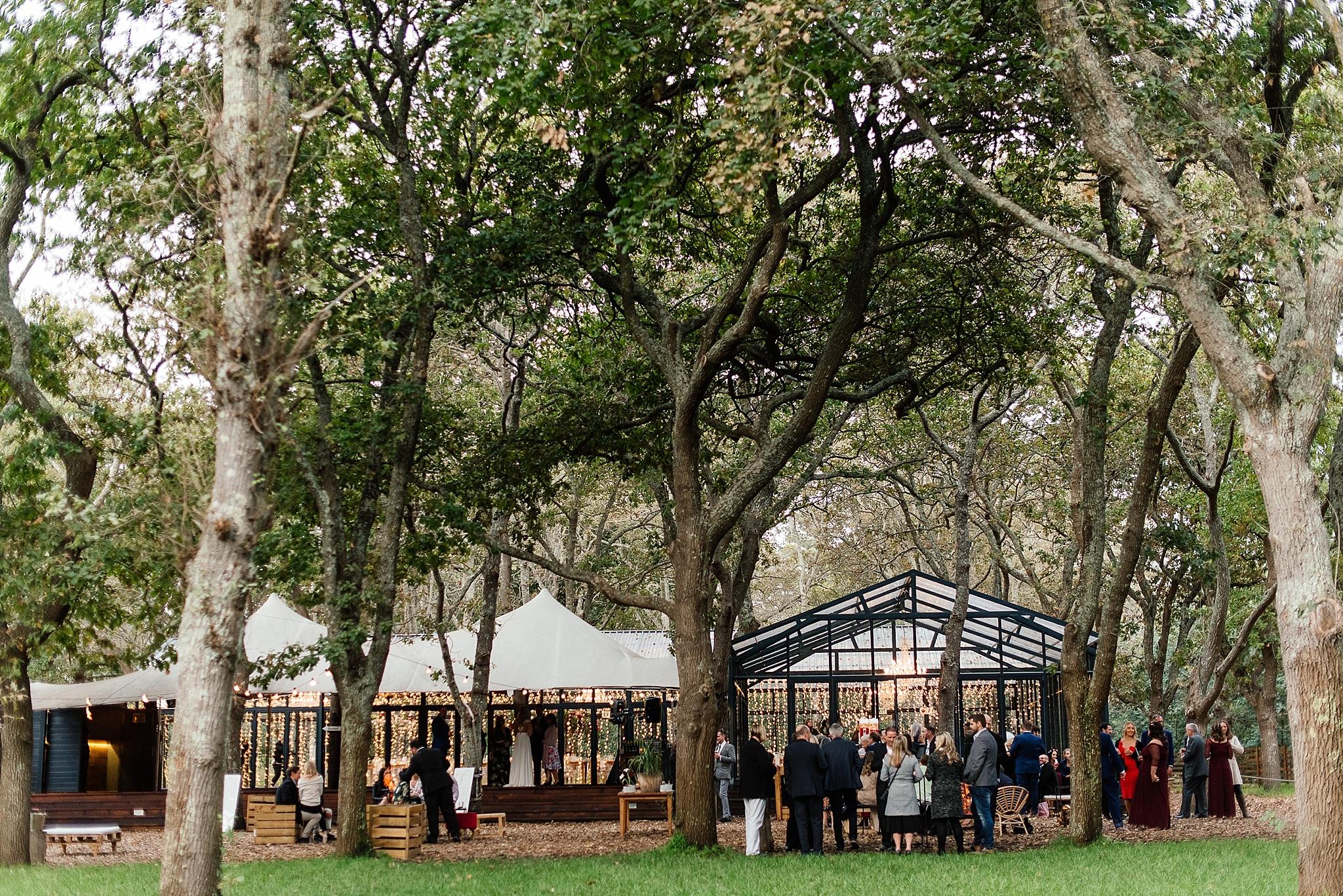Cape Town Photographer Darren Bester - Die Woud Wedding - Gareth & Roxanne_0038.jpg