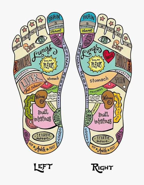 97bc7be0426ad01f31bc70ad5dc3771e--foot-reflexology-physical-pain.jpg