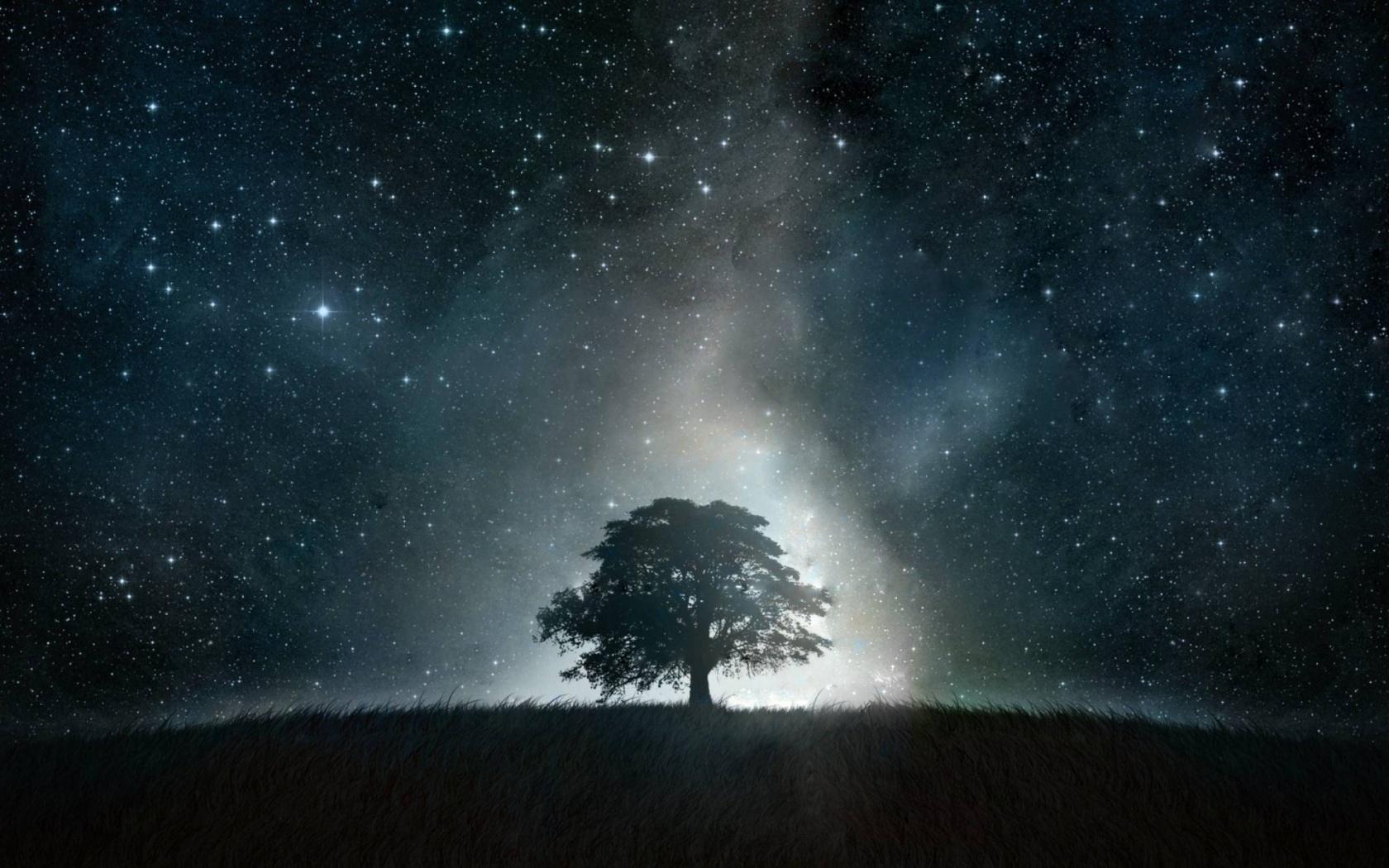 ws_Tree_Grass_Stars_Glowing_Night_1680x1050 (1).jpg
