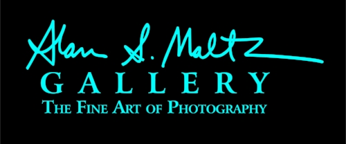 CLICK HERE TO VISIT THE ALAN S. MALTZ GALLERY WEBSITE