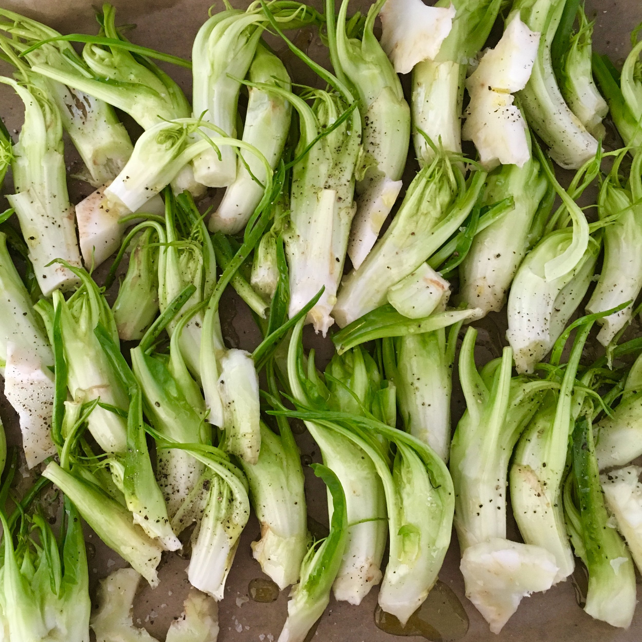 The individual shoots resemble asparagus a little bit, however they have a bitter flavour not unlike endives or dandelion. Here the shoots are dressed with olive oil and some salt and pepper before they are roasted in the oven for 20 minutes.