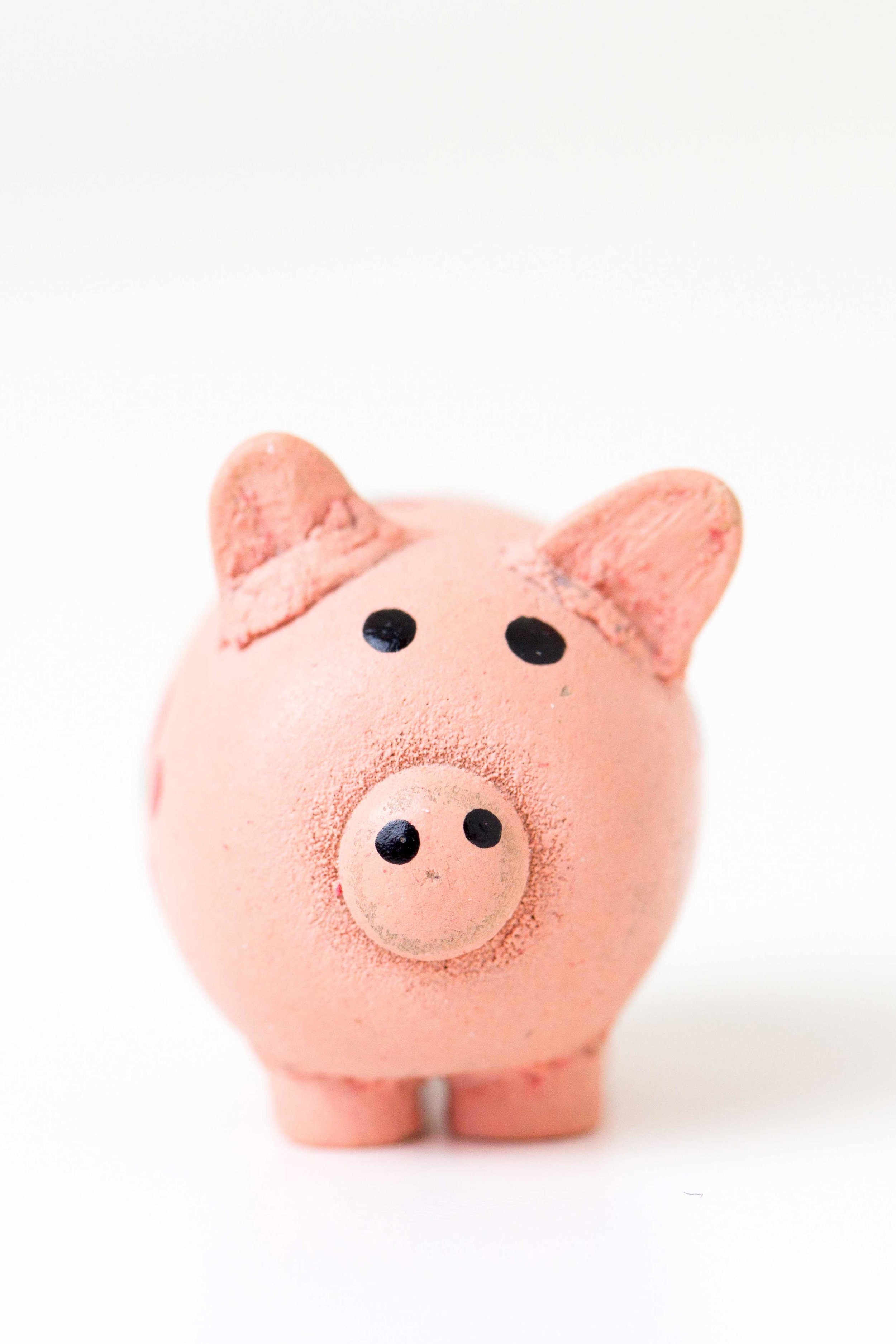 Piggy-Bank-Portrait.jpg