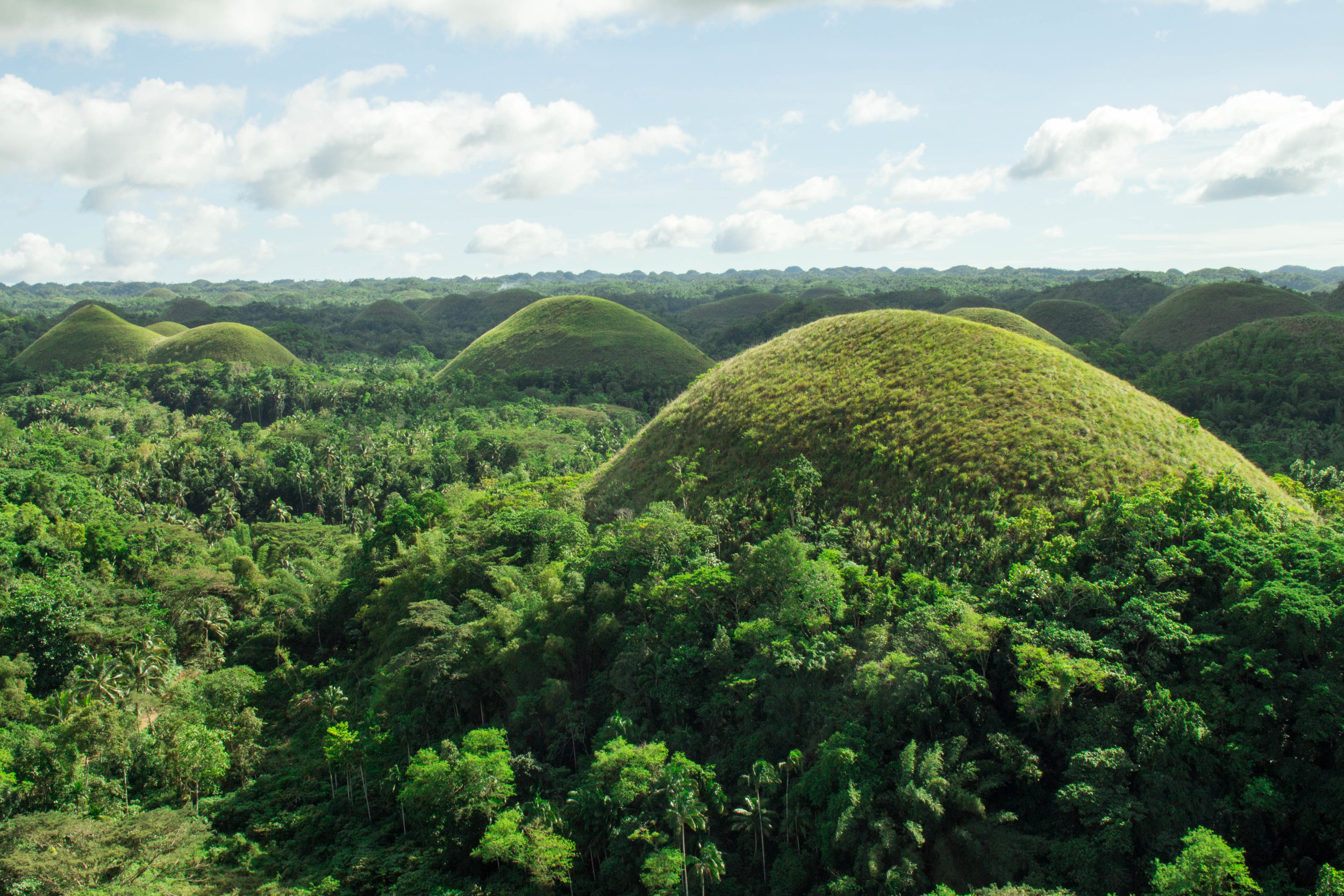 Chocolate Hills, named after the color that the grass takes on during the dry seaon
