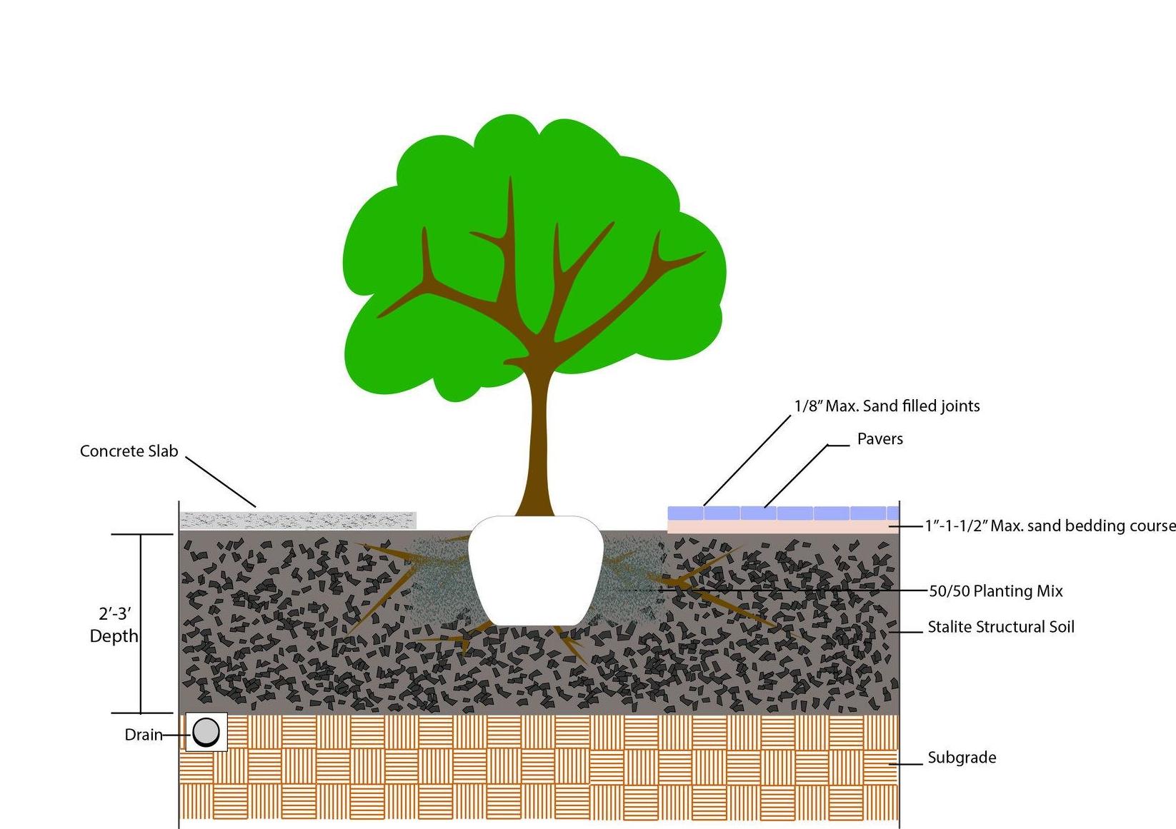 Tree Planting Detail.jpg
