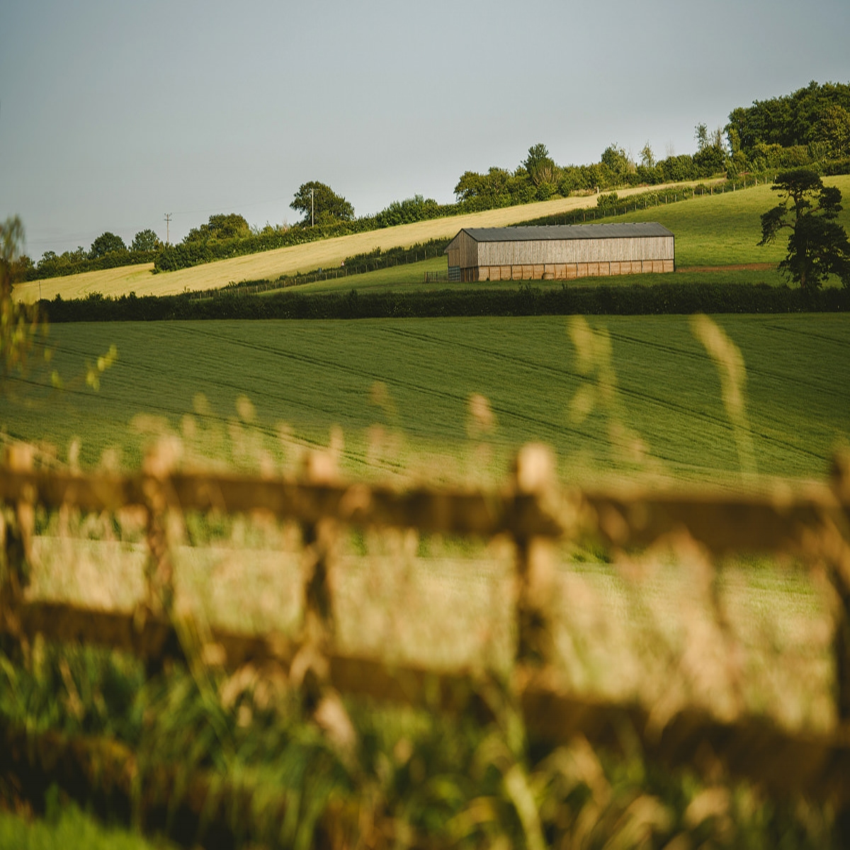 Agricultural Building Planning -