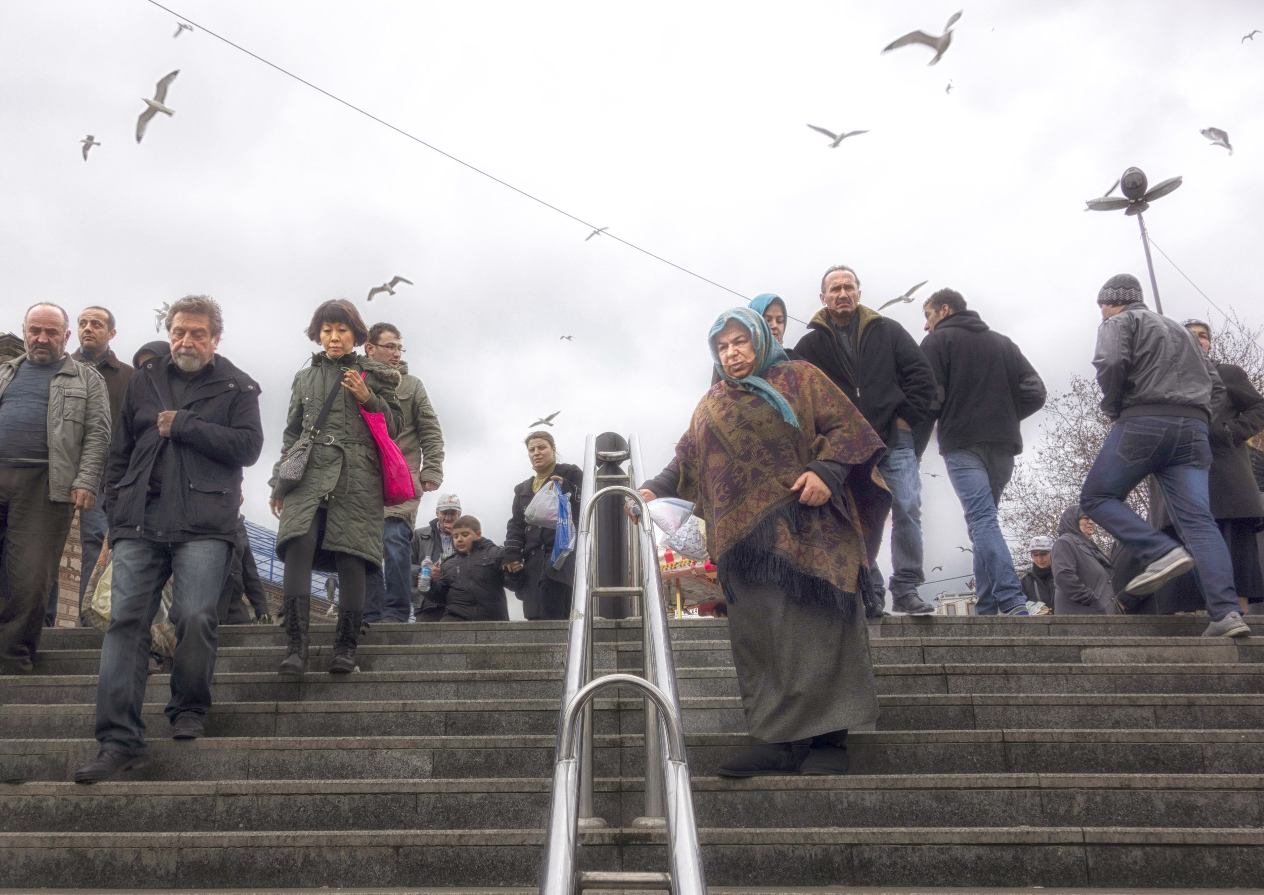 Stairs and Birds