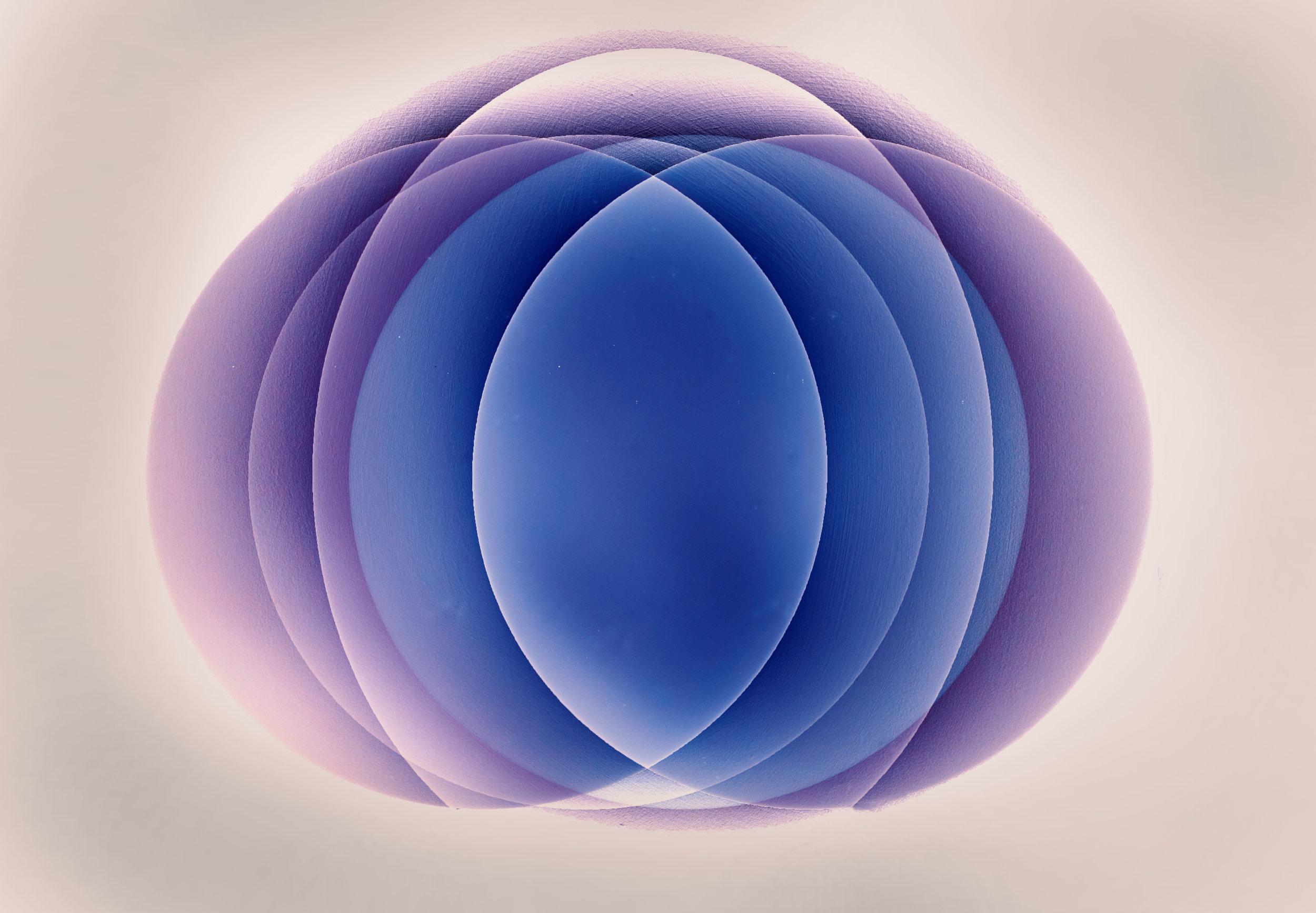 Blue and Purple Lotus