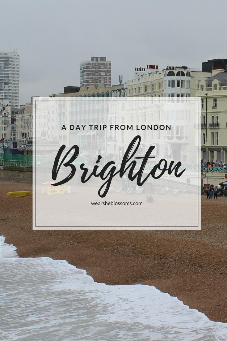 brighton-day-trip.png