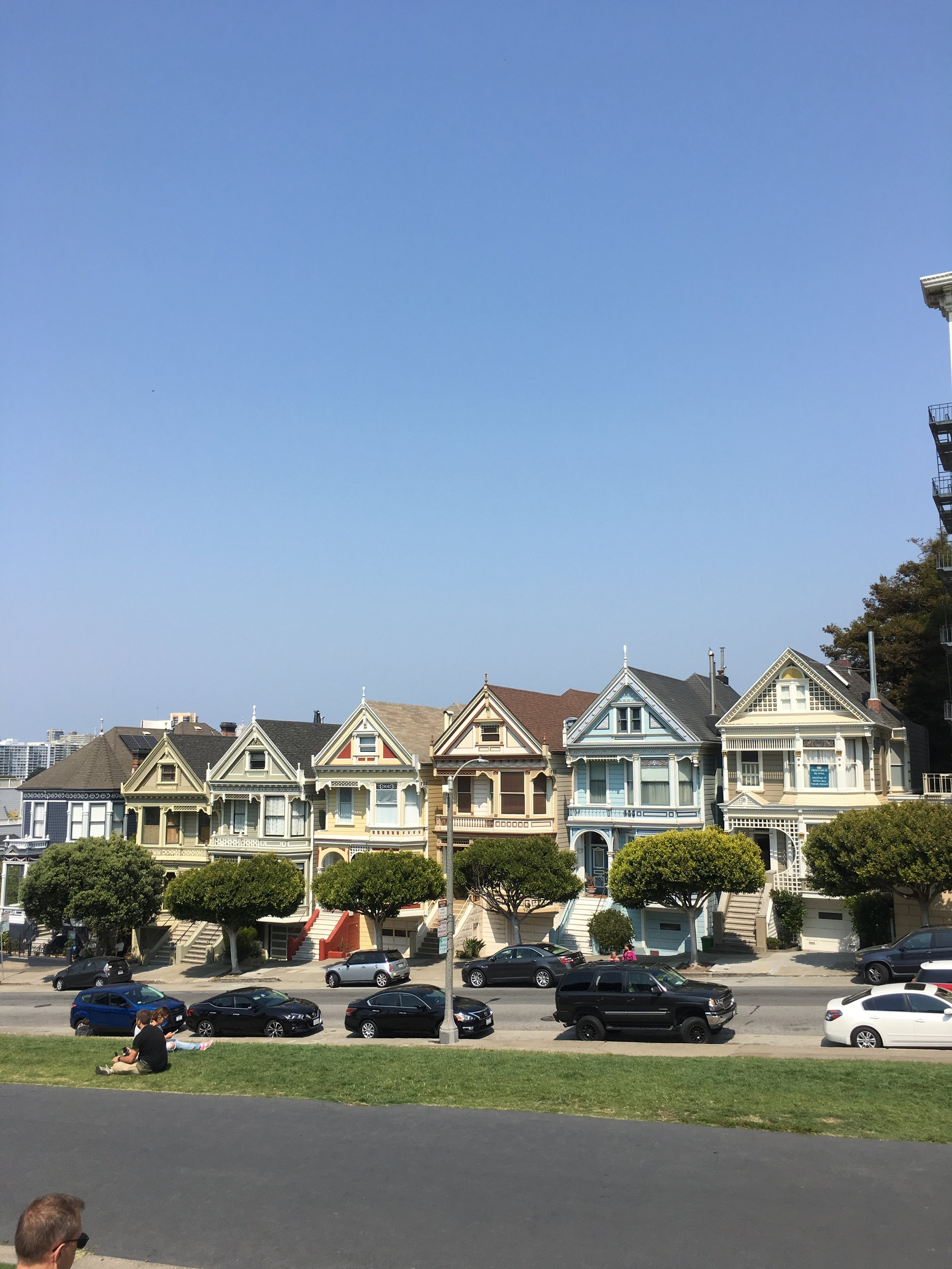 The Quick and Cheap Guide to Visiting San Francisco in Three Days - The Painted Ladies