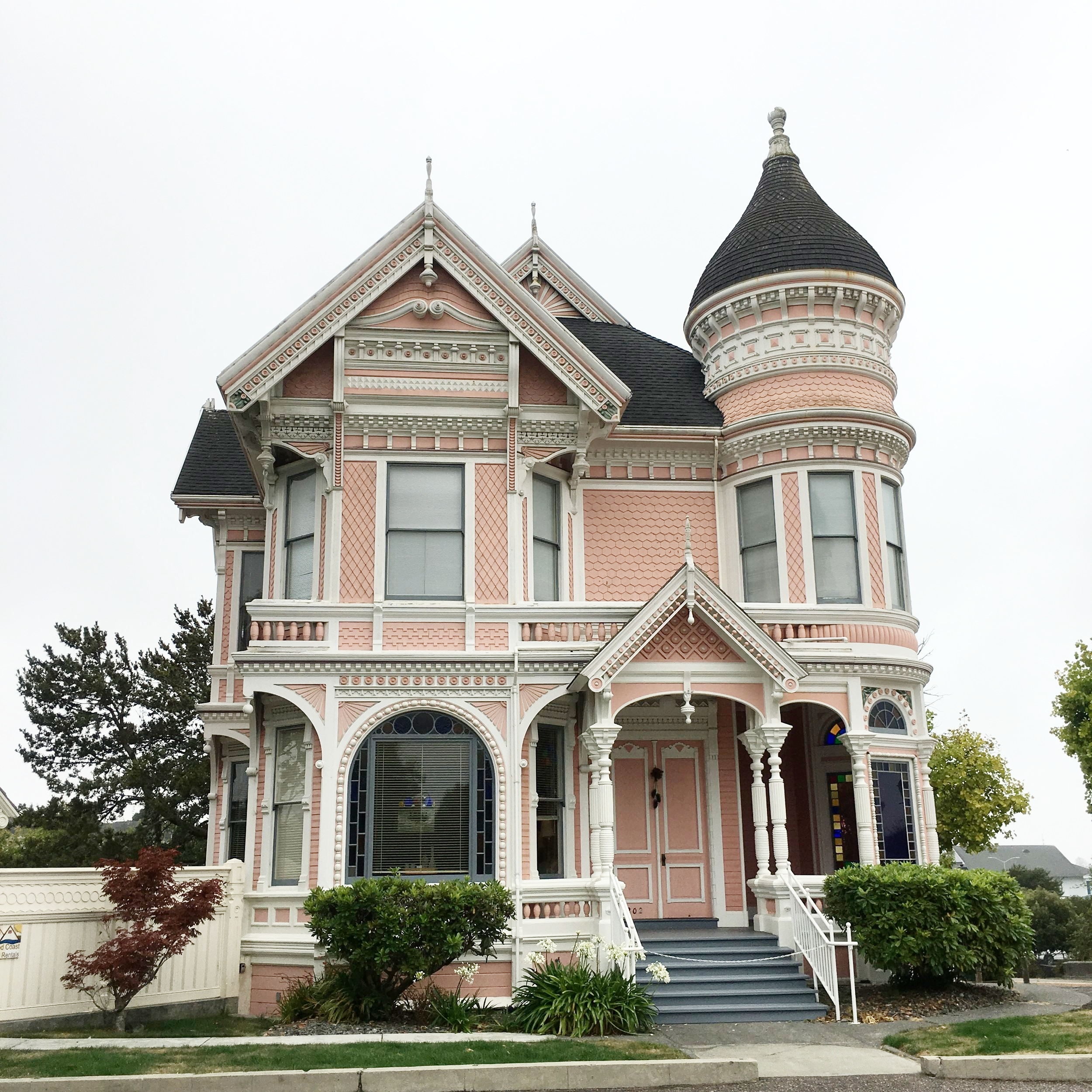 The Pink Lady in Eureka, CA - wear she blossoms
