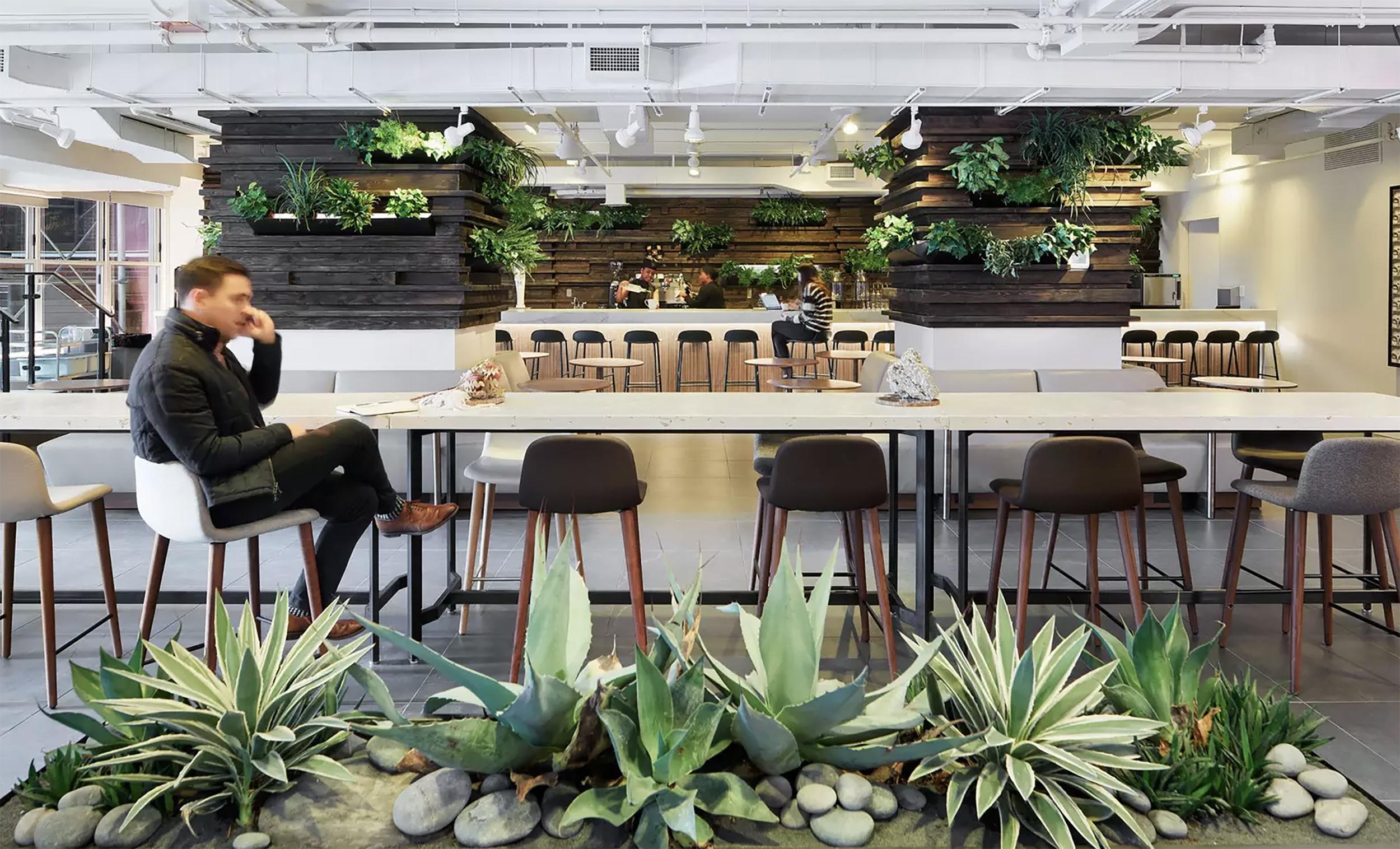 Plantscapes6.jpg