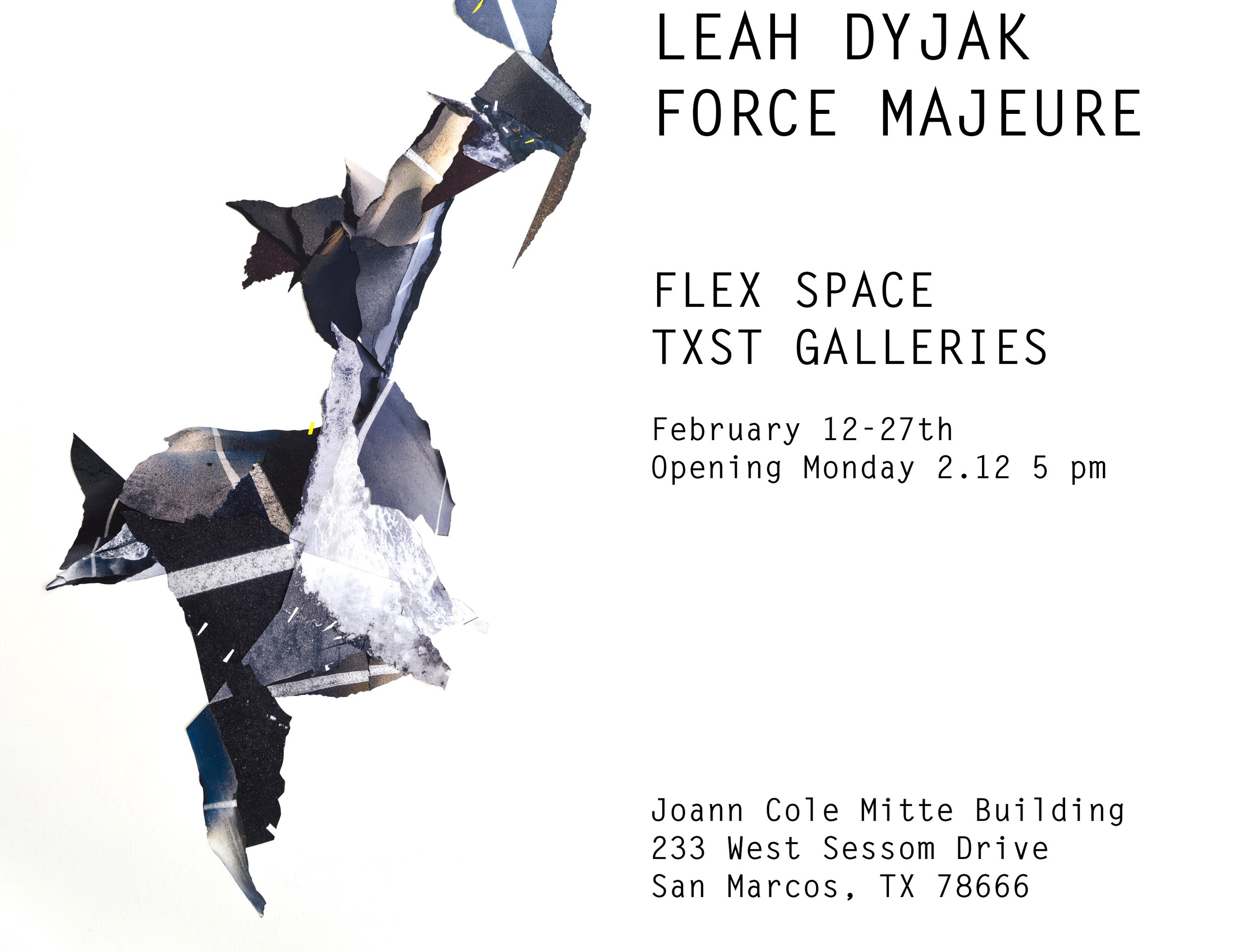 Force Majeure (Leah Dyjak), FLEX space exhibition, On view February 12–February 27, 2018