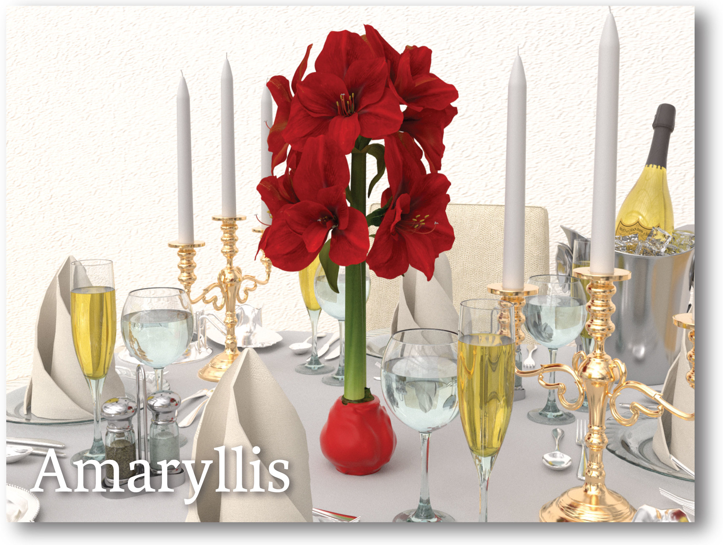 Bloomaker-Amaryllis-Product-Home-Page.jpg