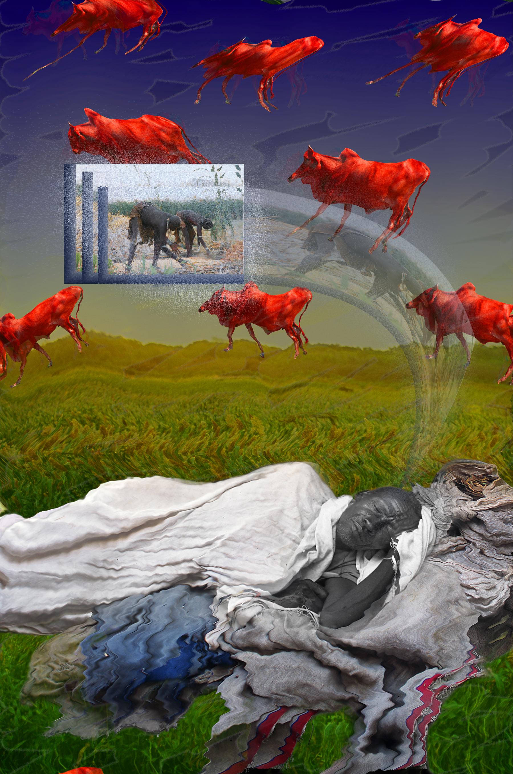 Red cattle dreamMasterApp.jpg