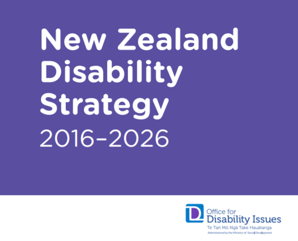 nz disability strategy.PNG