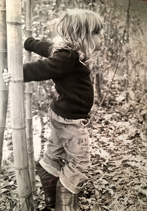 Another of the 4-year-old blondes was Zoe. The kids loved playing in the bamboo grove, which had been a green canopy of 45-foot high culms of timber bamboo, but which bloomed and went to seed in 1975, at the end of its 120-year life cycle.